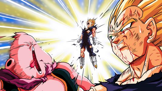 Dragon Ball Végéta se sacrifie pour détruire Buu en se faisant exploser