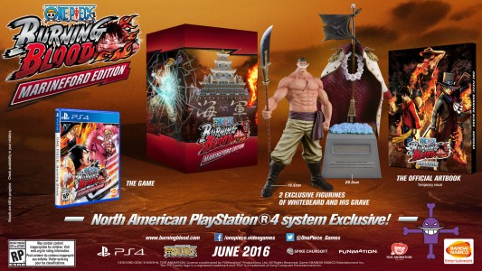 One Piece - Burning Blood édition collector