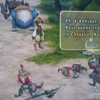 Journal Nostalgie Final Fantasy Crystal Chronicles Lilties battus par le Chevalier Noir
