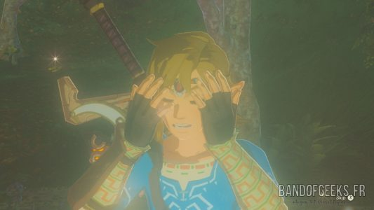 Breath of the Wild Link se cache le visage