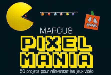Pixelmania couverture du livre