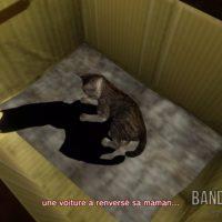 Shenmue I & II petit chat dans un carton