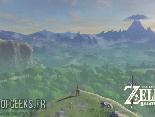 Breath of the Wild Link devant Hyrule