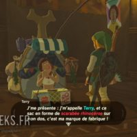 Breath of the Wild Link discute avec Terry
