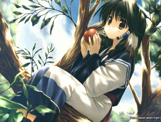 Utawarerumono : Prelude to the Fallen arrive en Occident